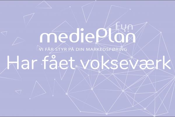 mediePlan-Fyn har fået vokseværk, og har pr. 1/9-2020 overtaget FauerWeb.